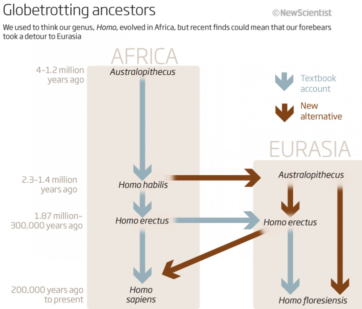 Our Asian Origins Infographic