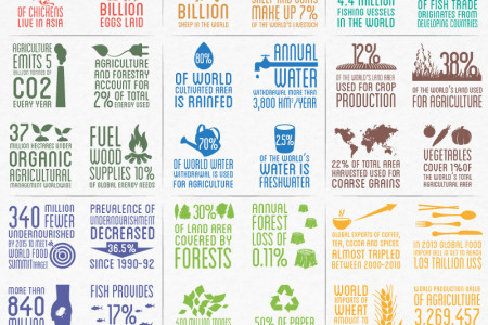 Our Food and Agriculture In Numbers Infographic