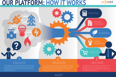Our Platform: How It Works Infographic