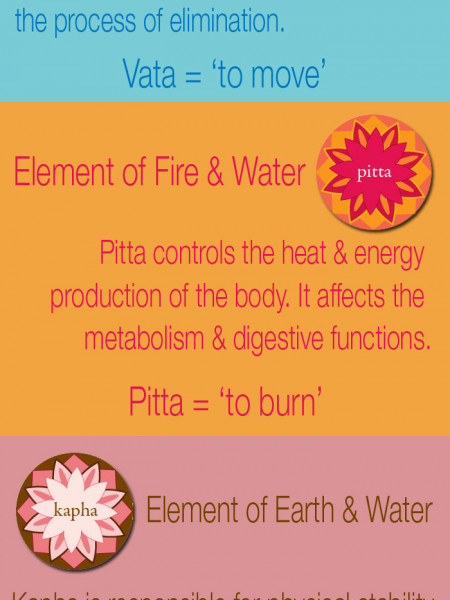 Overview of Ayurvedic Doshas - Vata, Pitta & Kapha Infographic