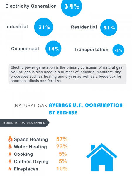 Overview of U.S. Natural Gas Market Infographic