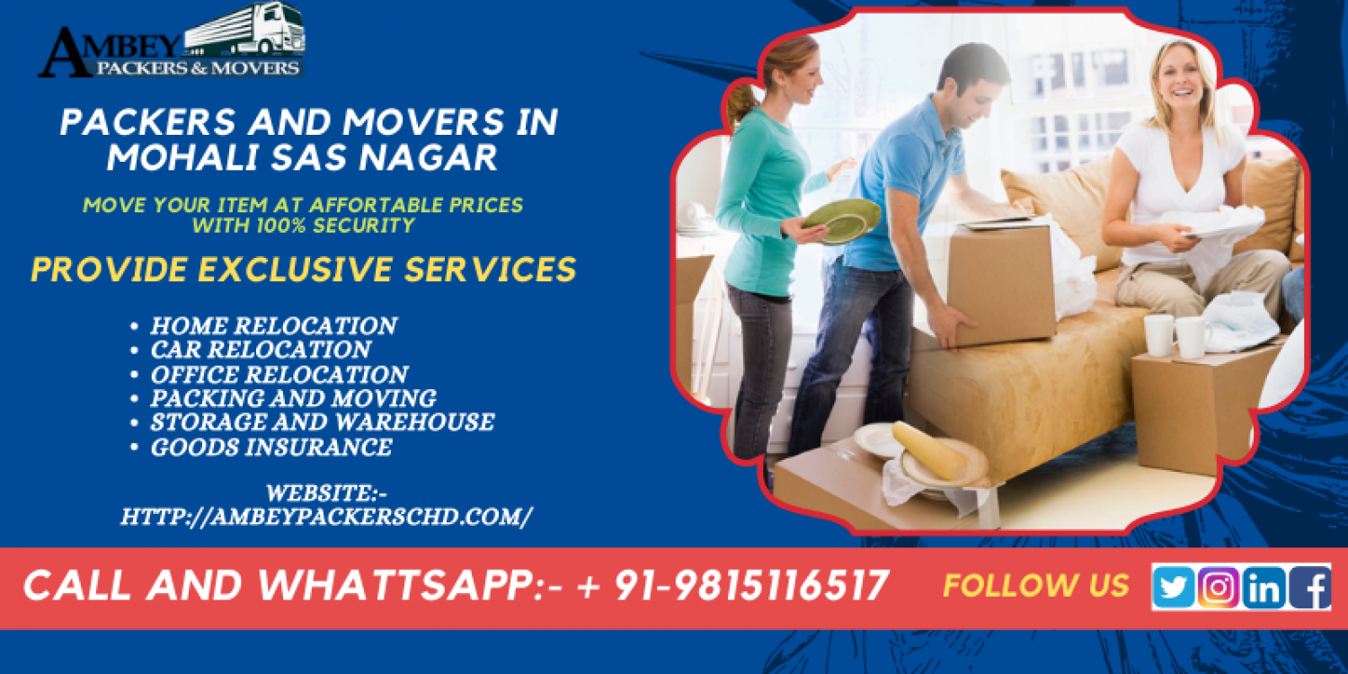 Packers and Movers in Mohali Sas Nagar Infographic