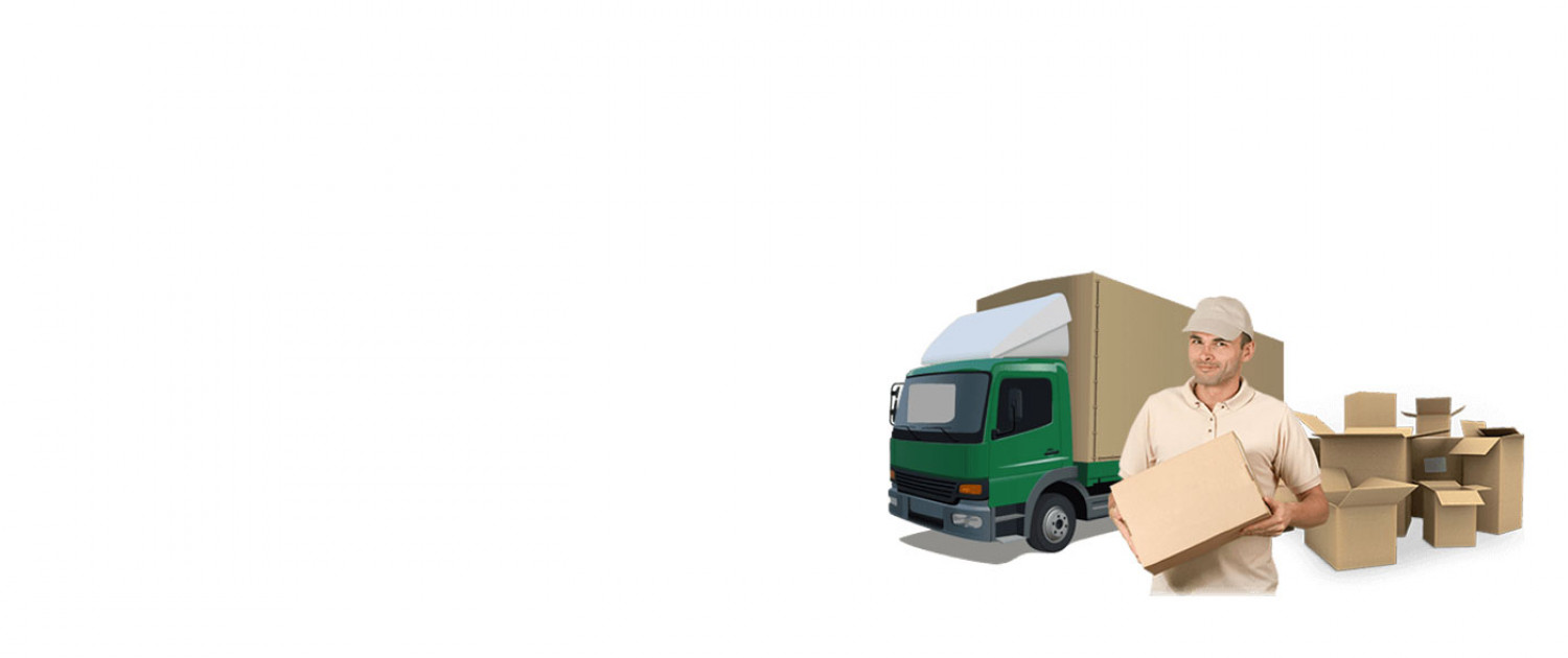 packers and movers in vasant kunj Infographic