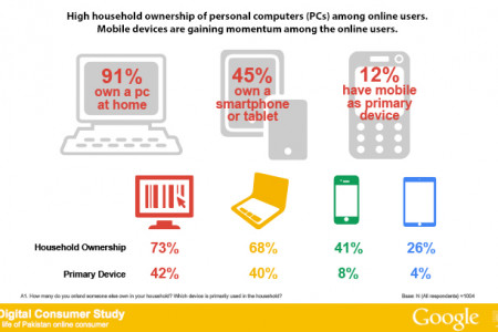 Pakistani Online Consumers and their Digital Life Infographic