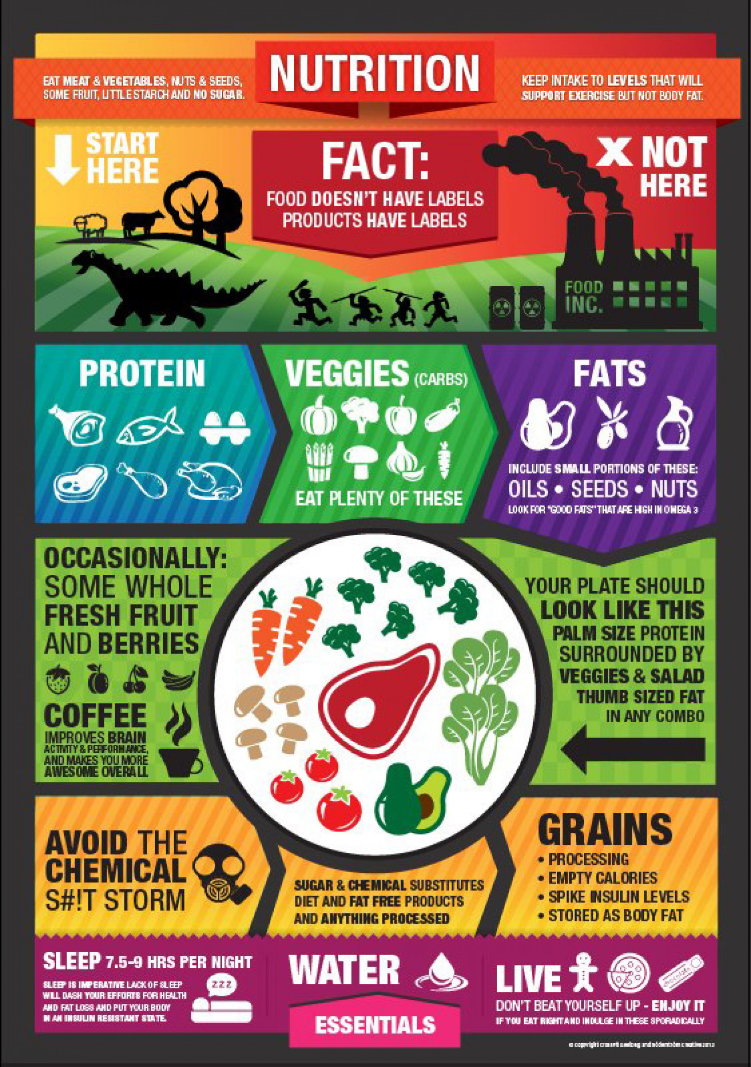 Paleo nutrition Infographic