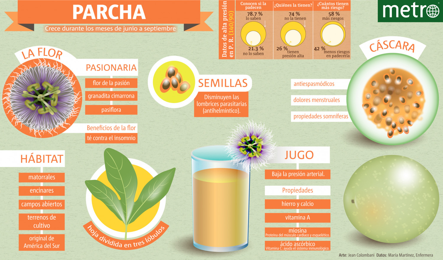 Parcha  Infographic