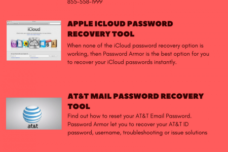 Password Armor - A Secure Vault for All Your Passwords Infographic