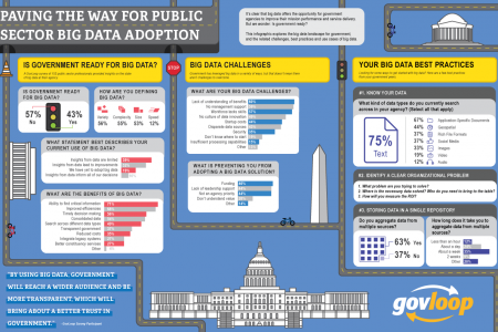 Paving the Way for Public Sector Big Data Adoption Infographic