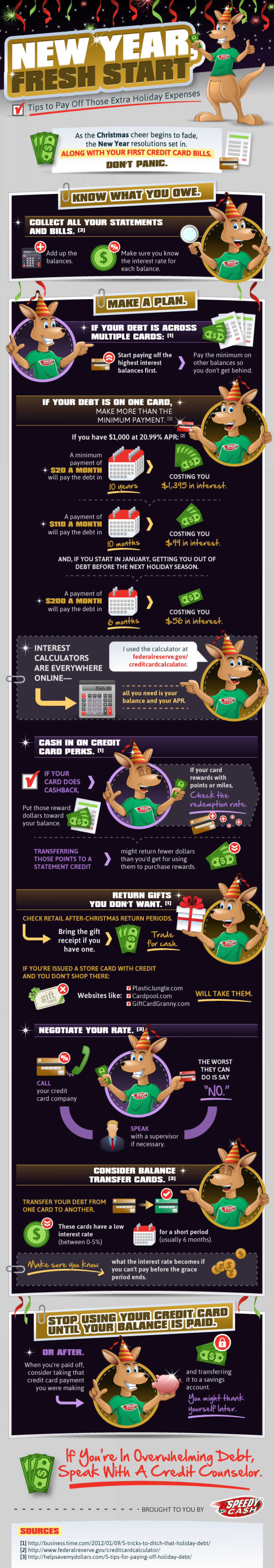 Pay Off Holiday Expenses Infographic