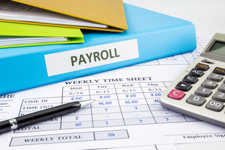 Payroll Core HRMS/EMS Infographic