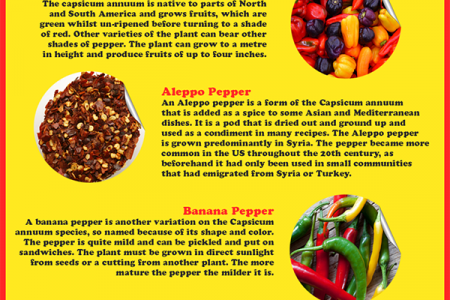 Pepper Infographic