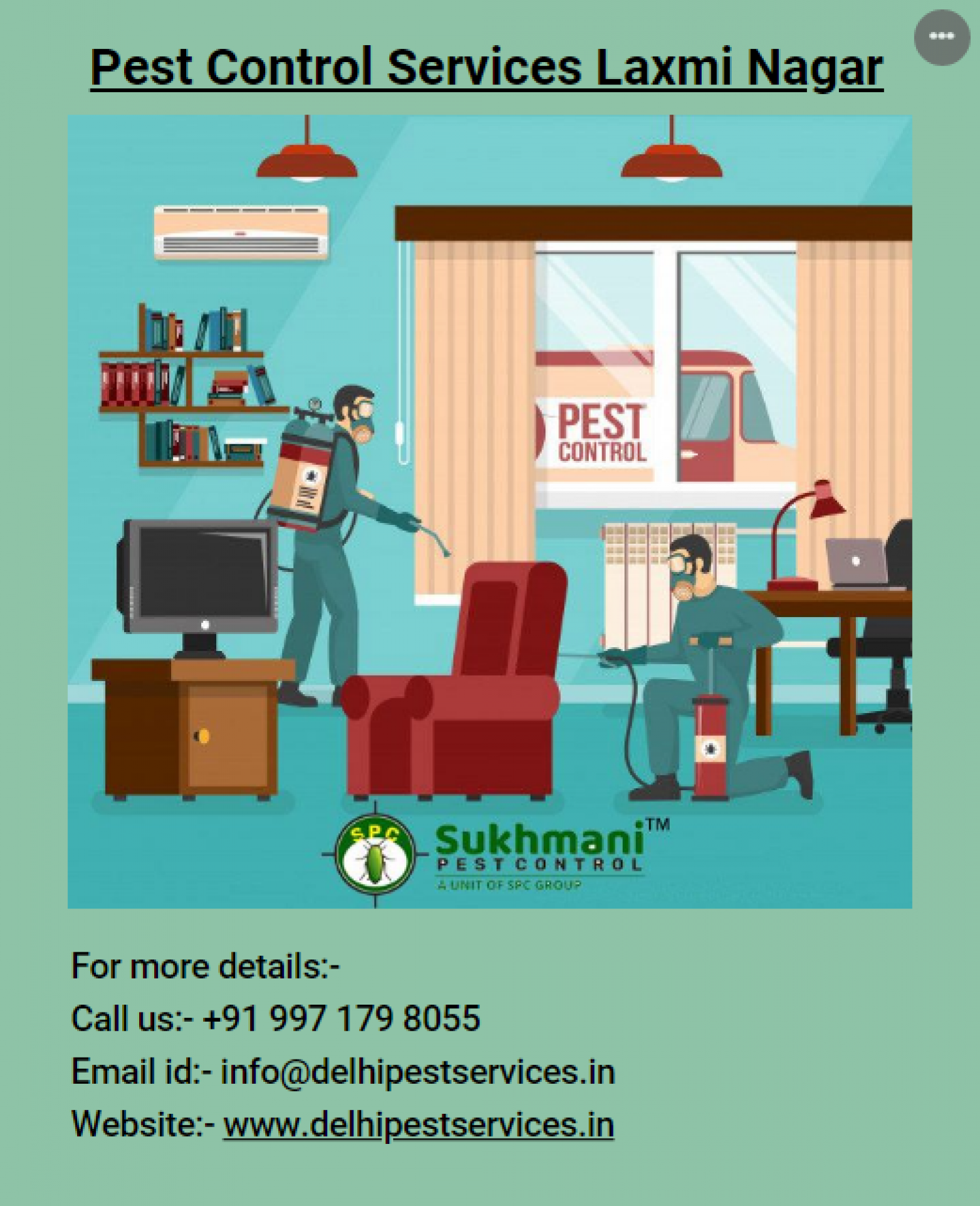 Pest Control Services in Laxmi Nagar Infographic