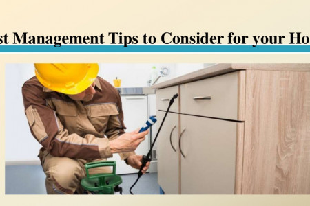 Pest Management Tips to Consider for your Home Infographic