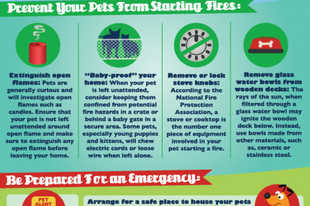 Pet Fire Safety Tips  Infographic