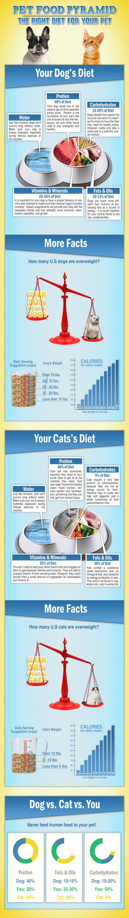 Pet Food Pyramid - The Right Diet for Your Pets
