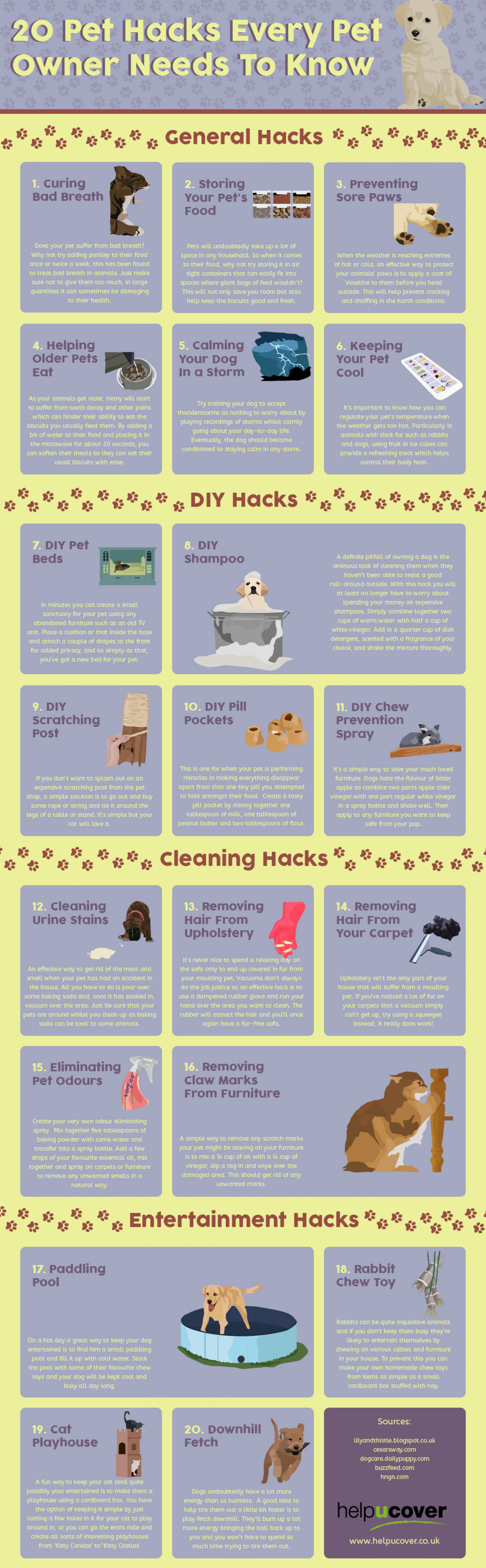 Pet Hacks Every Pet Owner Should Know Infographic