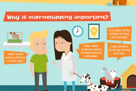Pet microchipping Infographic