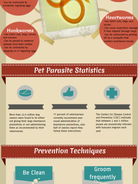 Pet Parasite Prevention Infographic