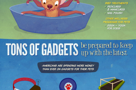 Pets & Kids… Not So Different Infographic