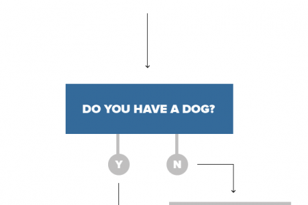 PetTag+ | Crazy Dog Person Infographic