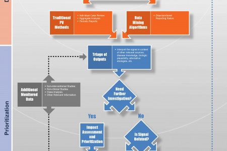 Pharmacovigilance Signal Detection Process Infographic