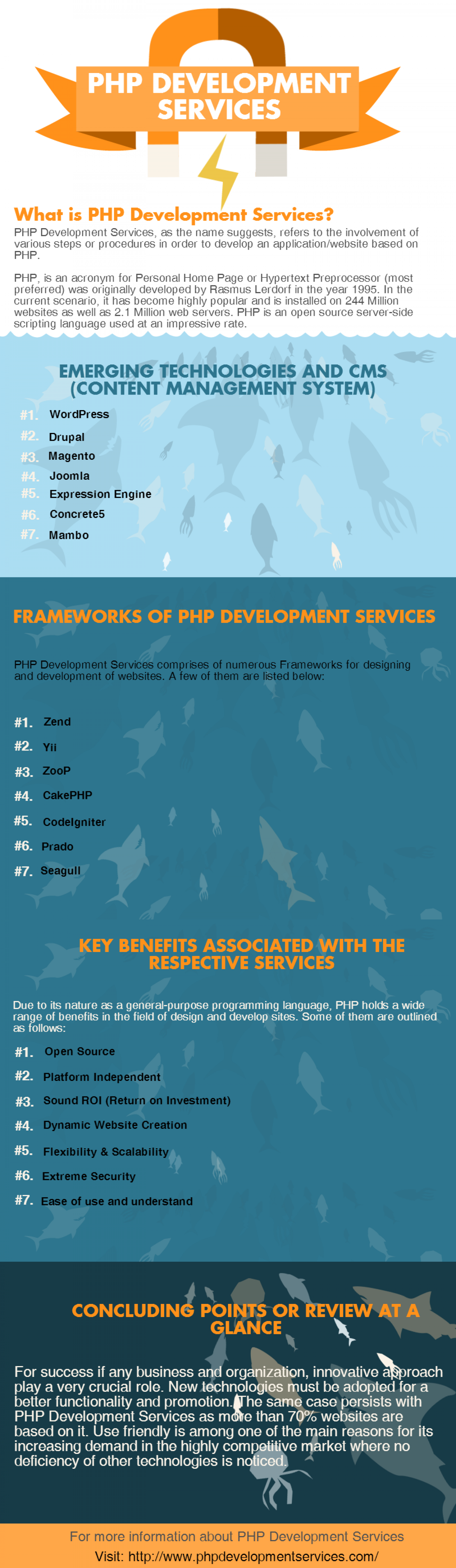 PHP Development Services Infographic