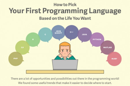 Picking Your First Programming Language Based on Lifestyle Factors Infographic