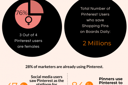 Pinterest Audience Insights for businesses Infographic