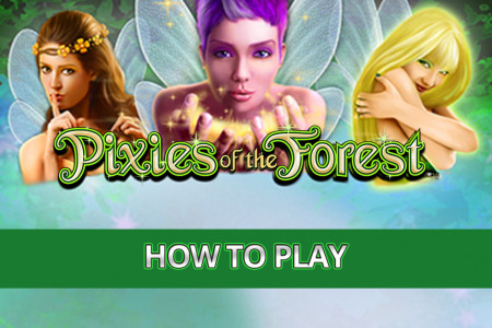 Pixies of the Forest Slot Game - How to Play Infographic