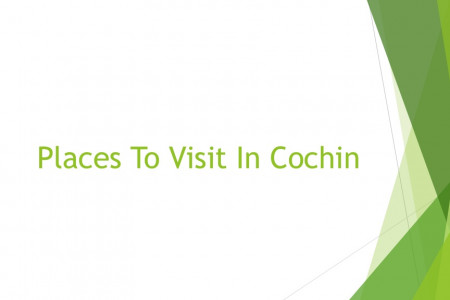 Places To Visit In Cochin Infographic