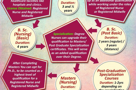 Plan Your Career in Nursing - Infographic Infographic