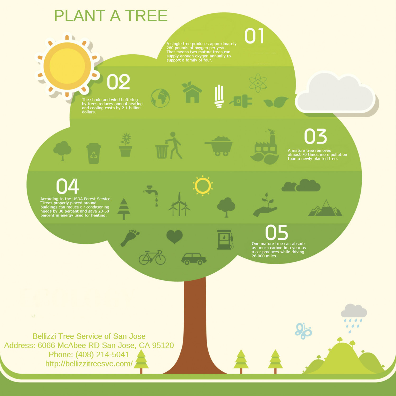 Plant A Tree Infographic