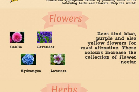 Plant These to Save The Bees Infographic