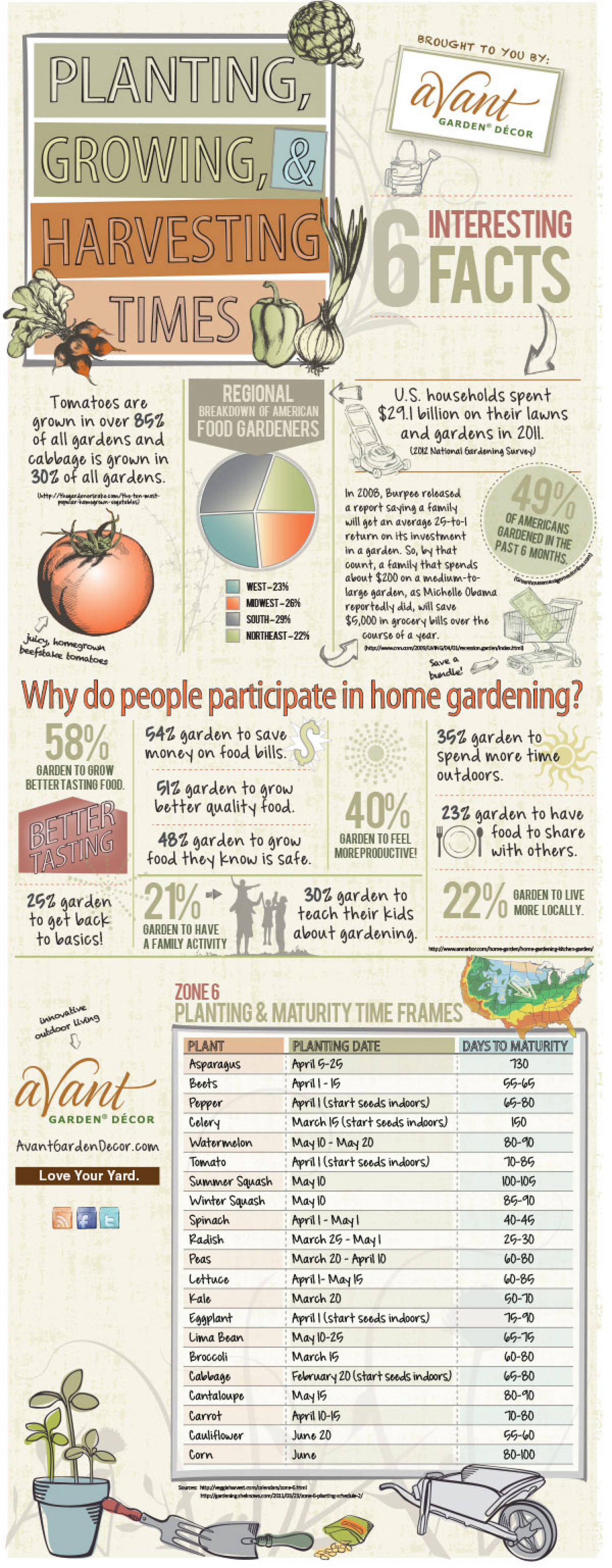 Planting, Growing and Harvesting Times Infographic