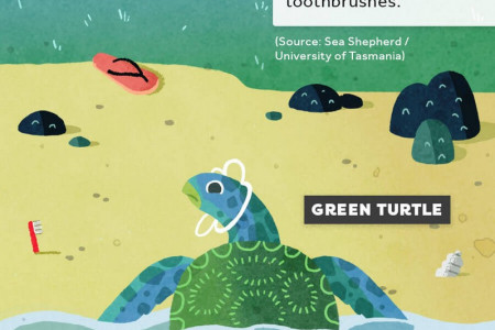 Plastic Pollution - From Mountain Top to Ocean Bottom Infographic