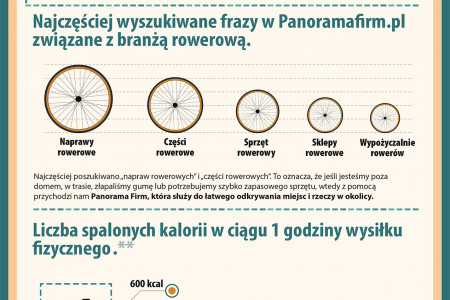Polacy kochają rowery / Poland loves bicycles Infographic