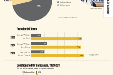 Politics in Brooklyn Infographic