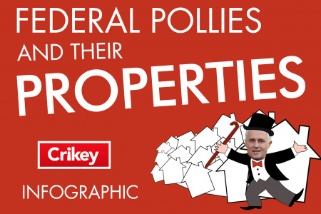 Pollies and their Properties Infographic