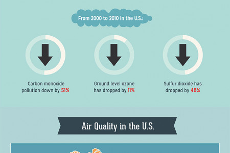 Pollution Revolution Infographic