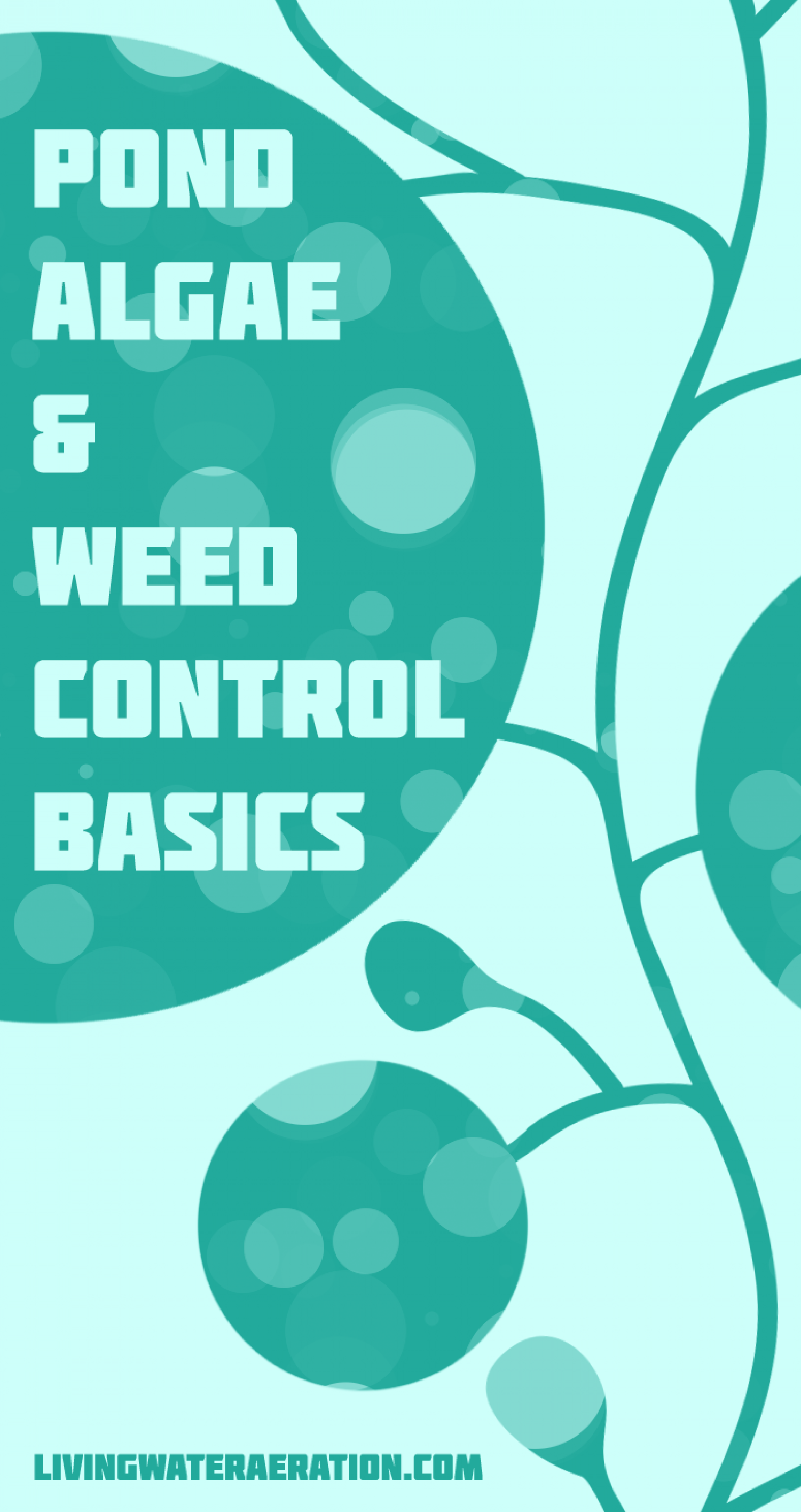 Pond Algae and Weed Control Basics Infographic
