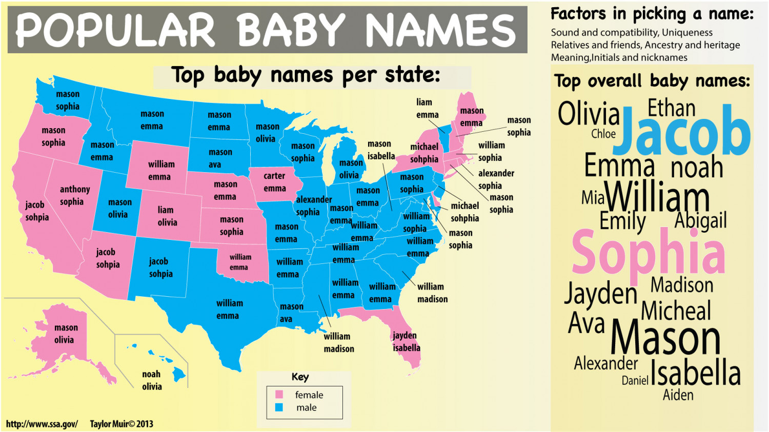 Popular Baby Names Infographic