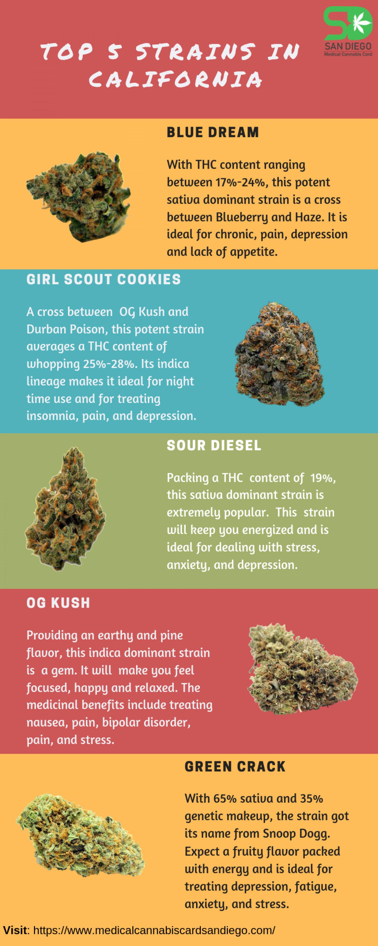 Popular strains in California that you cannot afford to miss! Infographic