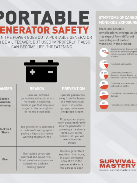 Portable Generator Safety Instruction Infographic Infographic
