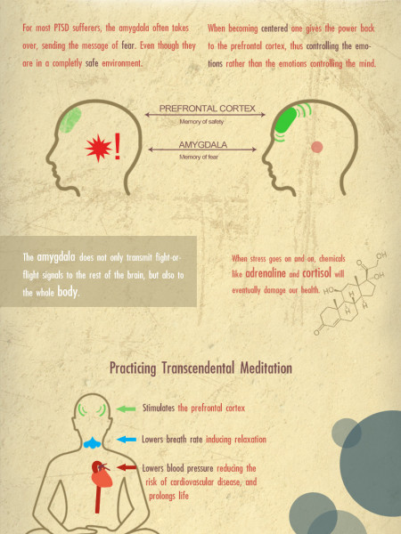 Post Traumatic Stress Syndrome Infographic