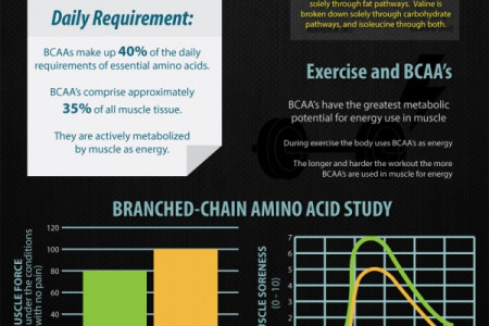 Post Workout Drinks Deliver The Goods Infographic