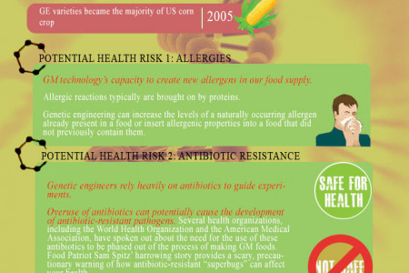 Potential Health Risks of Eating GMO Foods Infographic