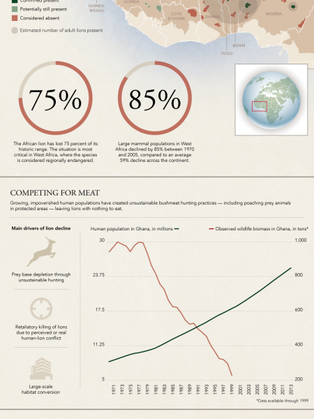 Poverty Threatens Extinction Infographic