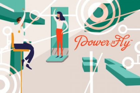 Power to Fly: Branding Assets Infographic