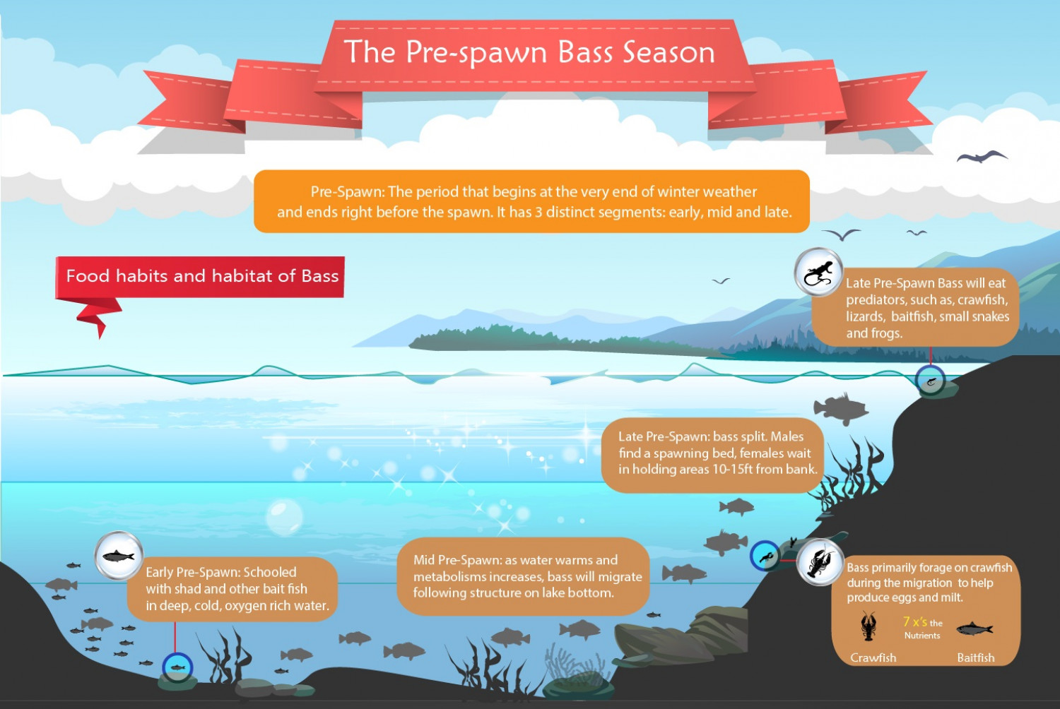 Pre Spawn Bass Season Infographic