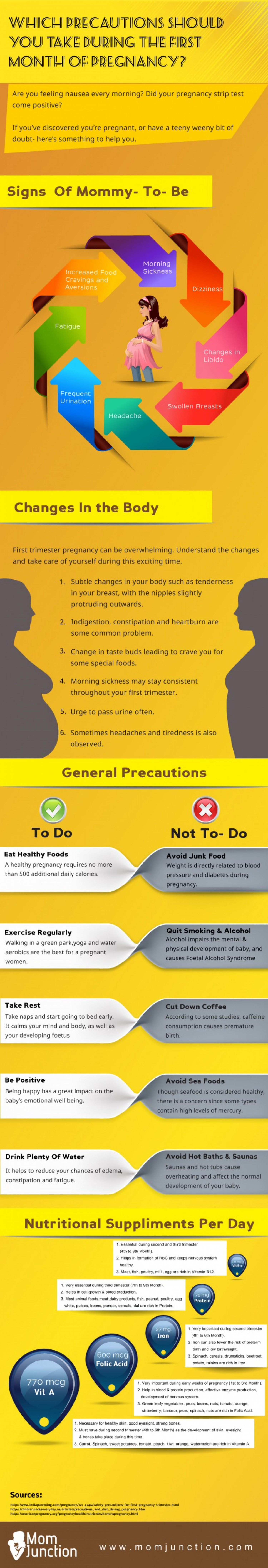 Precautions You Should Take During the First Month Pregnancy  Infographic